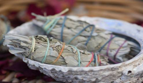 Smudging: Plants, Purification and Prayer